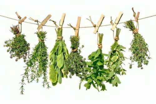 Травяной сбор